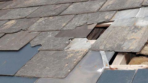 Major Storm Damage in Western Pennsylvania