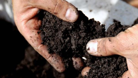 Reducing Moisture in Your Home by Reducing Wet Soil near Basement Walls