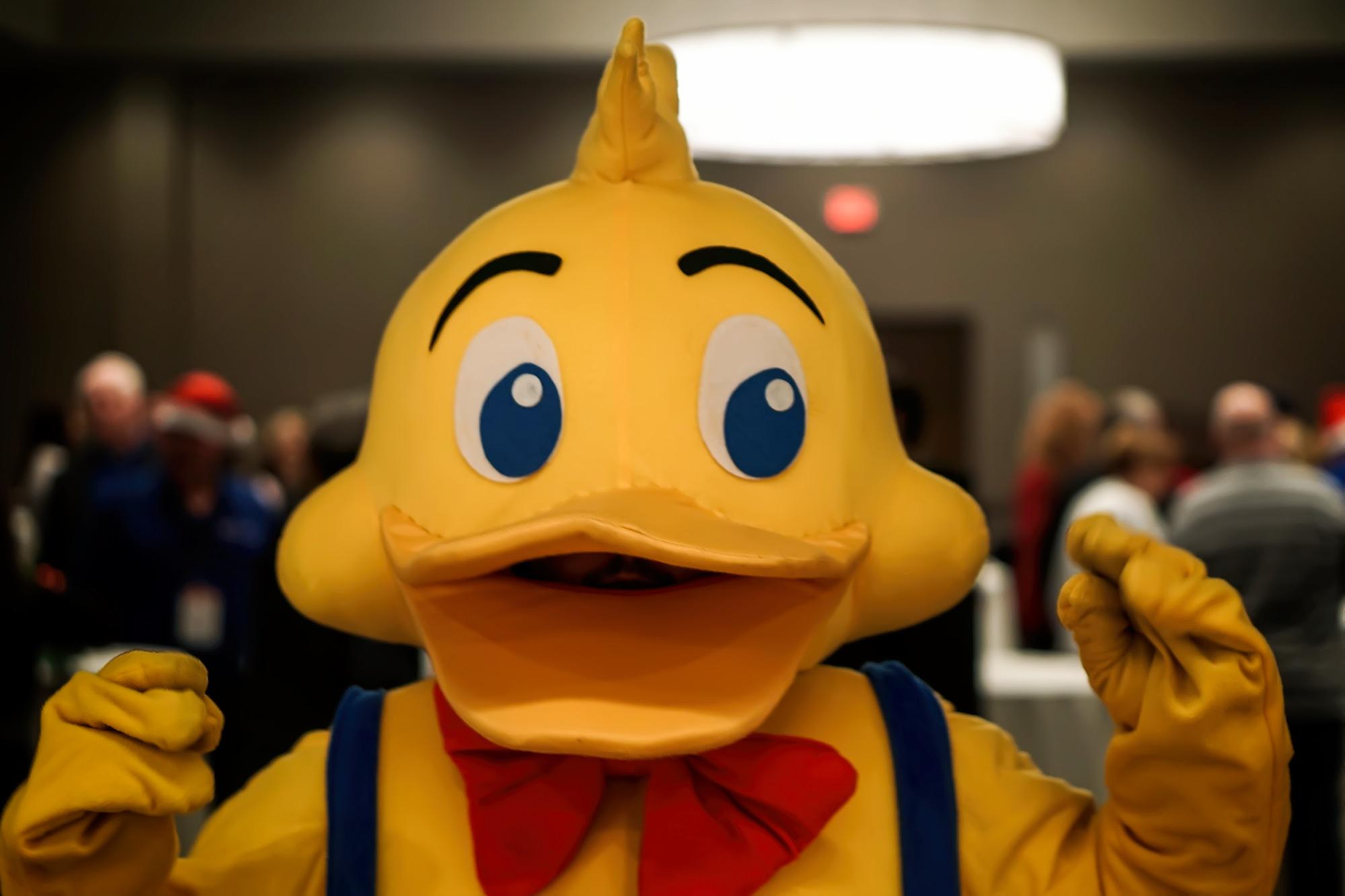 duck duckstein